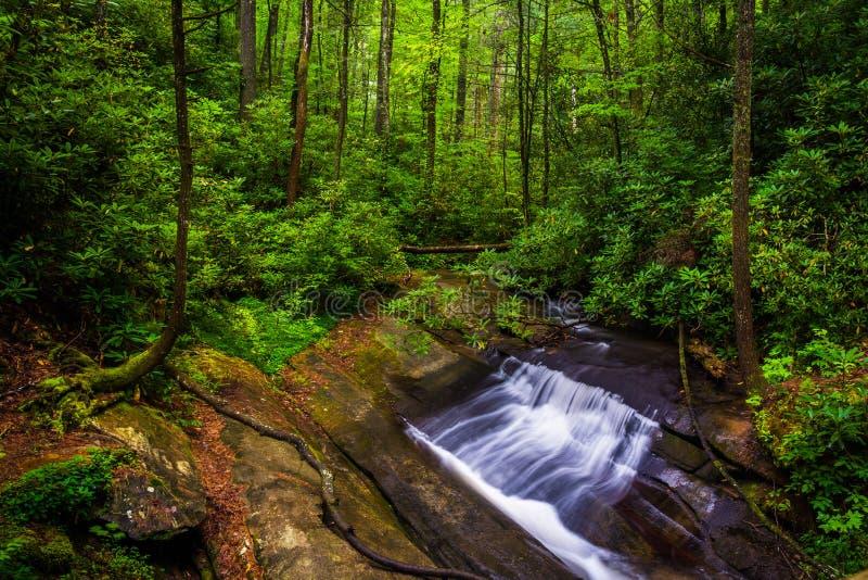在Carrick小河的小瀑布,在表岩石国家公园, Sout 库存图片