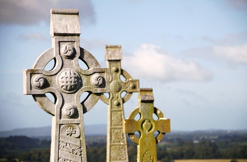 在Cashel,爱尔兰岩石的凯尔特十字架  免版税库存图片