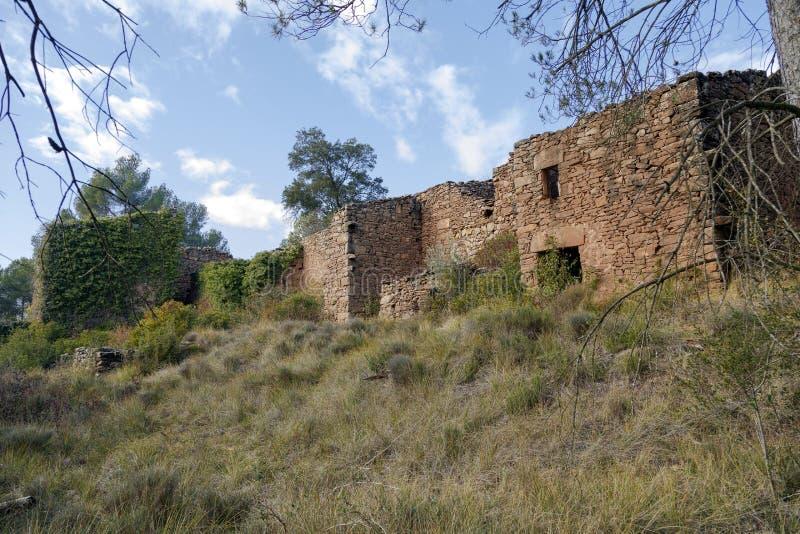 在Castellnou de Bages,卡塔龙尼亚西班牙的自治市的putxot 免版税库存图片