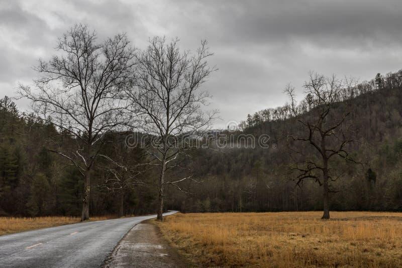 在Cataloochee谷的冬天,大烟山国民同水准 库存图片