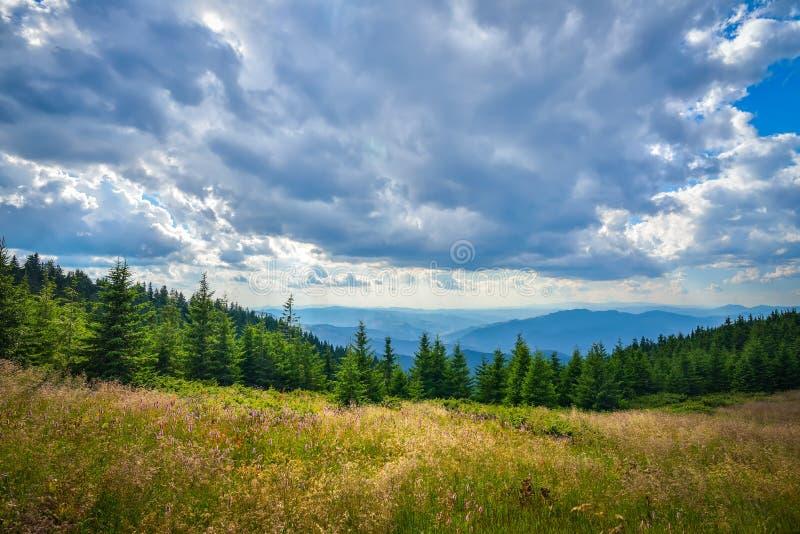 在Ceahlau山的Lanscape,罗马尼亚 免版税库存图片