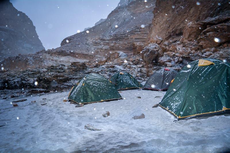 在Chadar艰苦跋涉期间的雪秋天 免版税库存照片
