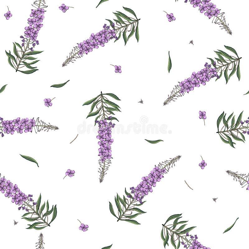 在Chamerion angustifolium野花的无缝的样式 精美花束 自由样式millefleurs 花卉 库存例证