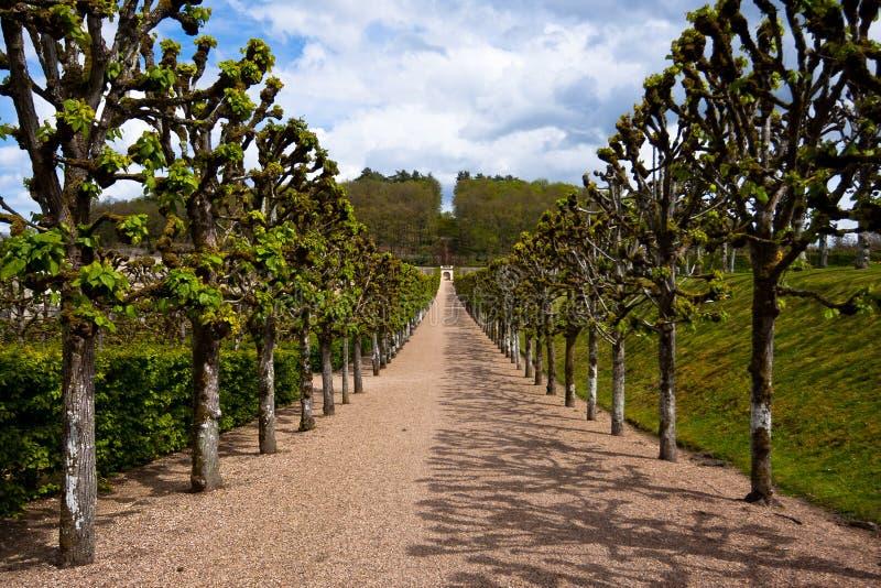 在Chateau de Villandry,卢瓦尔Valley,法国附近的胡同 免版税库存图片