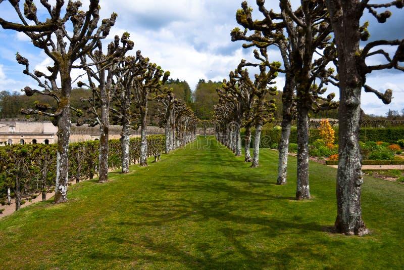在Chateau de Villandry,卢瓦尔Valley,法国附近的胡同 图库摄影