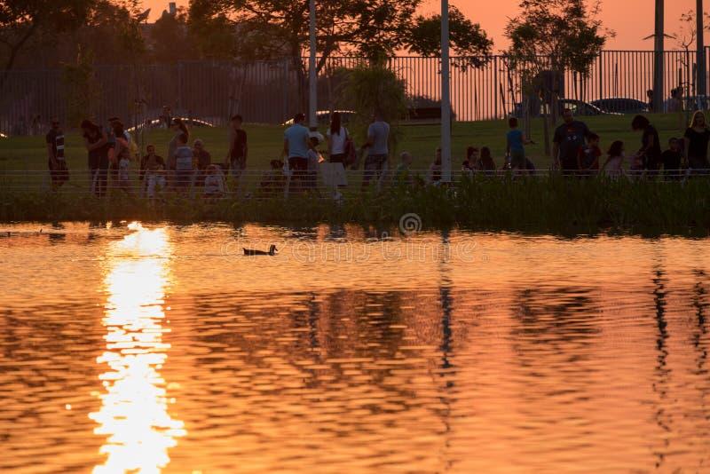 在childs公园池塘附近的人们日落的 库存照片