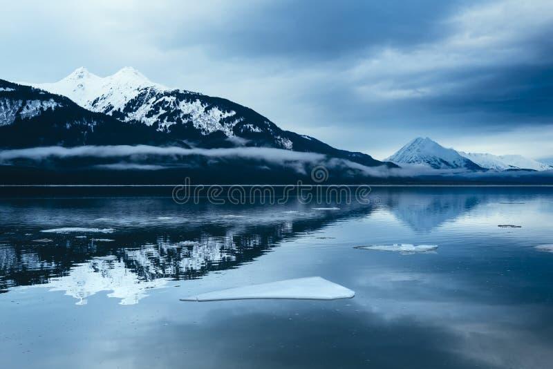 在Chilkat的浮动冰, Haines阿拉斯加 库存图片