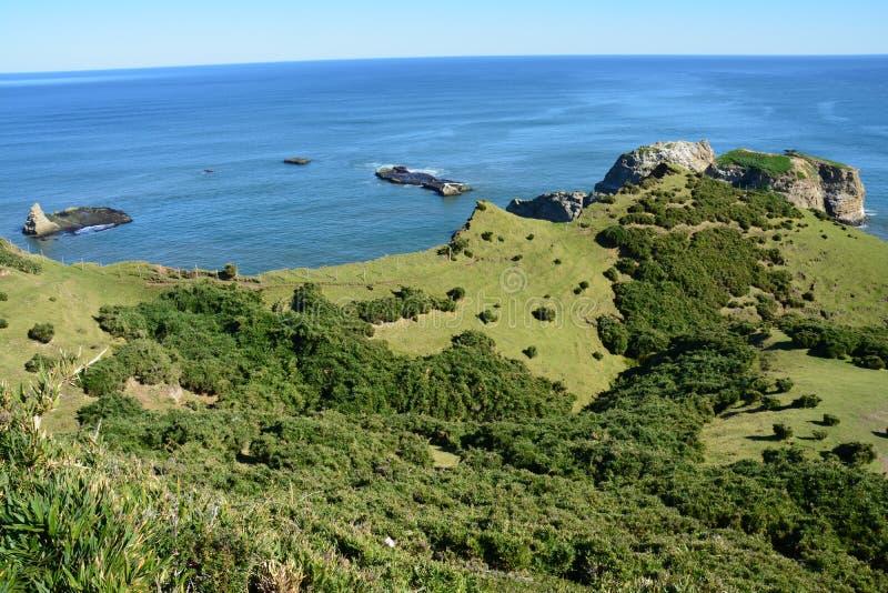 在Chiloe海岛,巴塔哥尼亚,智利上的Chiloe国家公园 库存照片