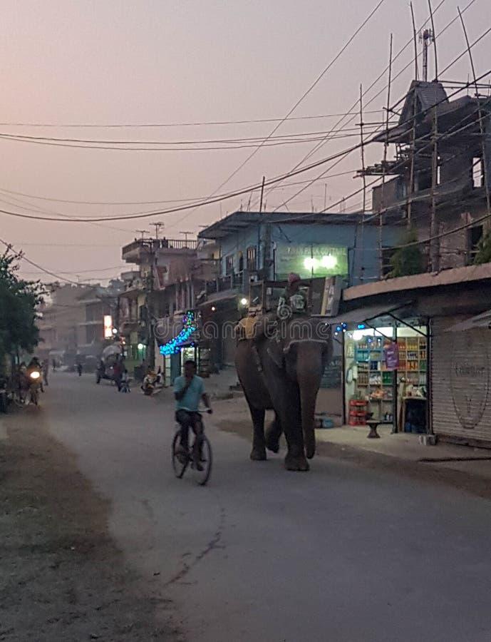 在Chitwan国立公园,尼泊尔附近的村庄 库存图片