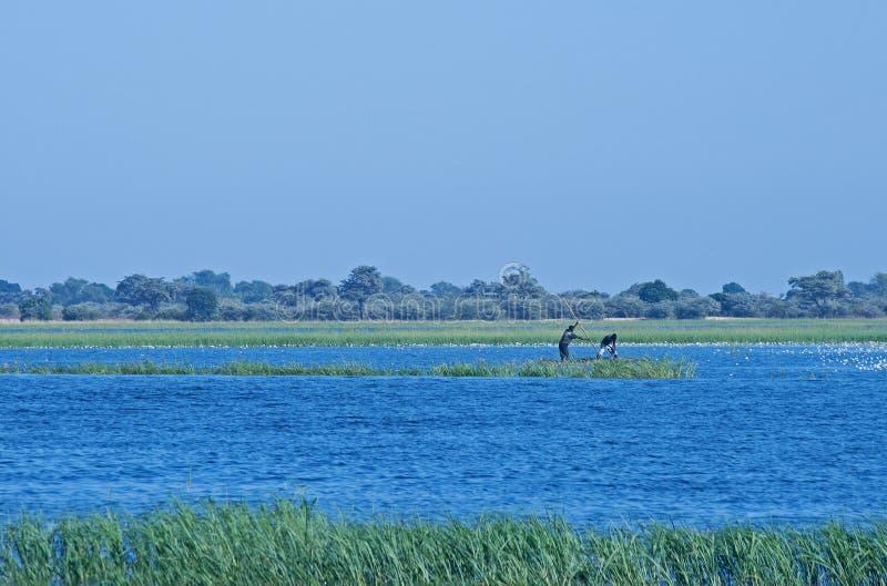 在CHOBE河的本机MOKORO小船的 库存照片
