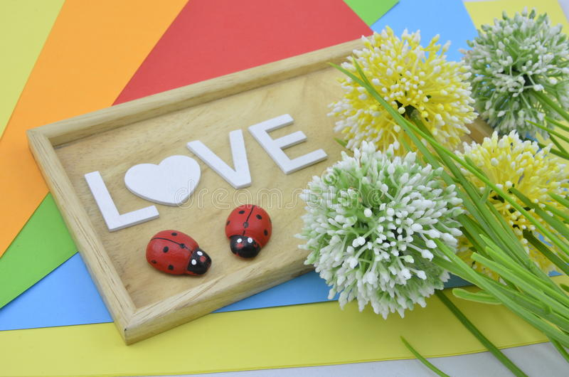在colourfull背景的爱标志 在右边安置的绿色,黄色和白色人造花 在马胃蝇蛆的红色瓢虫 库存图片