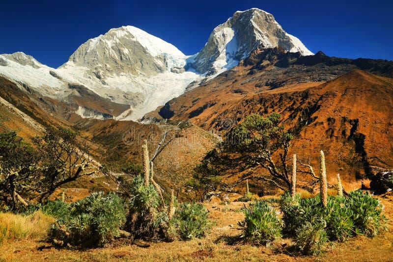 在Cordiliera Blanca的Huascaran峰顶 免版税库存照片