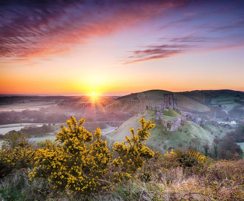 在Corfe城堡的日出 库存照片