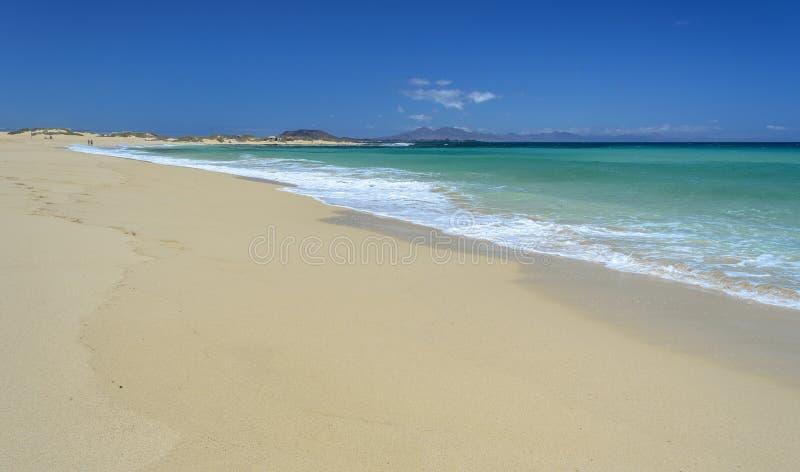 在Corralejo,费埃特文图拉岛海岛的海滩 库存照片