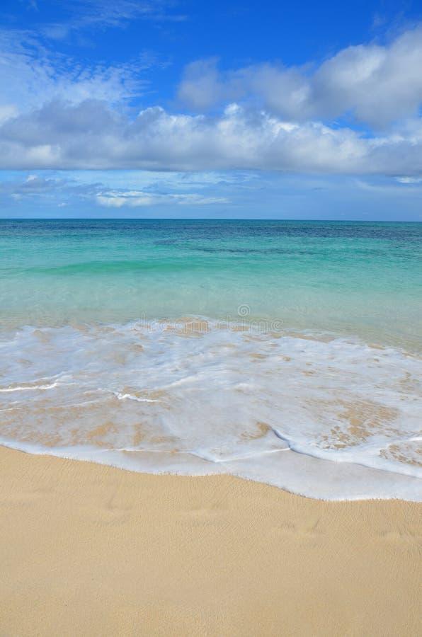 在Corralejo -费埃特文图拉岛-加那利群岛的海滩 免版税库存图片