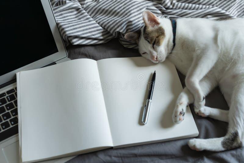 在COVID-19冠状病毒流行期间,从家庭社会疏远工作,在家工作,远程工作,带笔和笔的笔记本 免版税图库摄影
