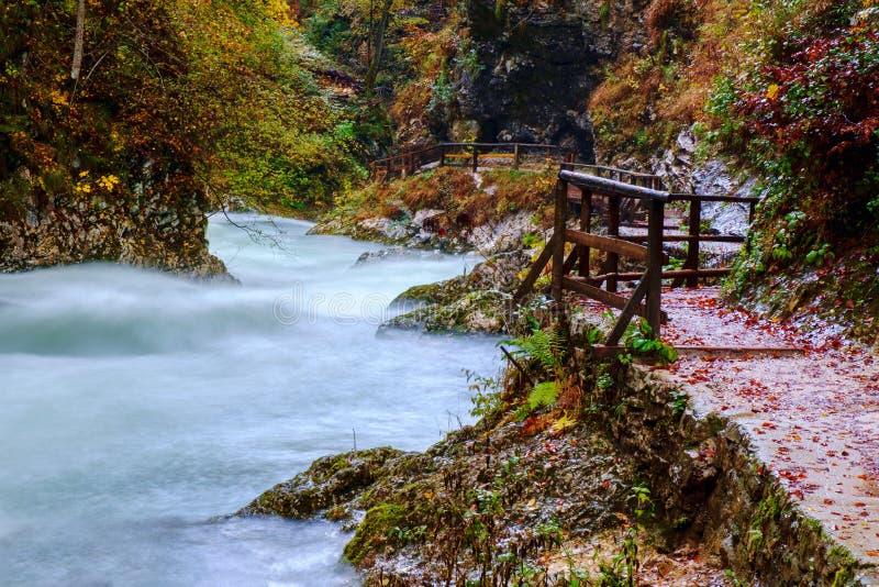 在curlicue河和美丽的a的美妙的Vintgar峡谷峡谷 免版税库存照片