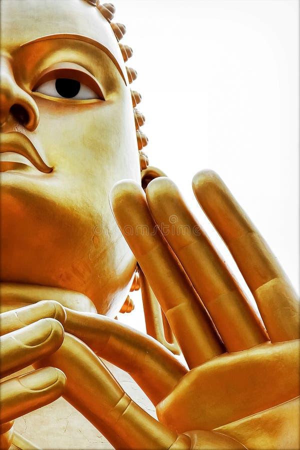 在Dambulla洞金黄寺庙的菩萨雕象 斯里南卡 免版税库存图片