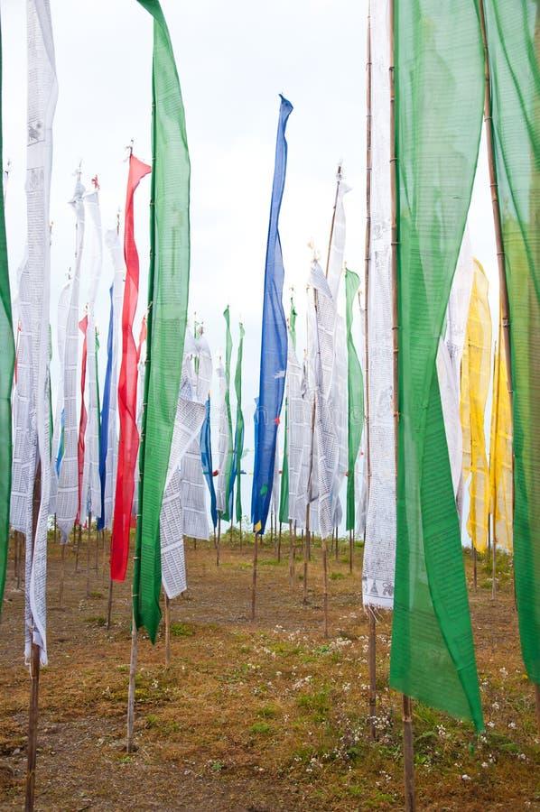 在Darjeeling的五颜六色的佛经标志域 免版税图库摄影