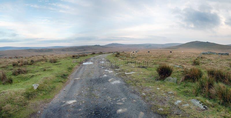 在dartmoor的一个荒凉的冬日 库存照片