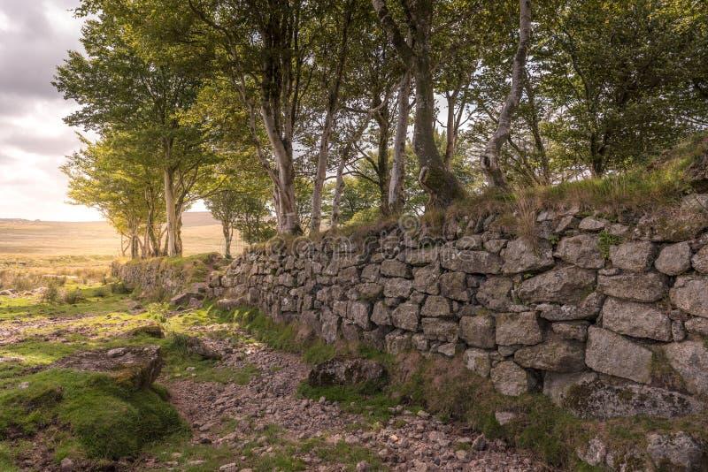 在Dartmoor的老花岗岩墙壁在英国 库存照片