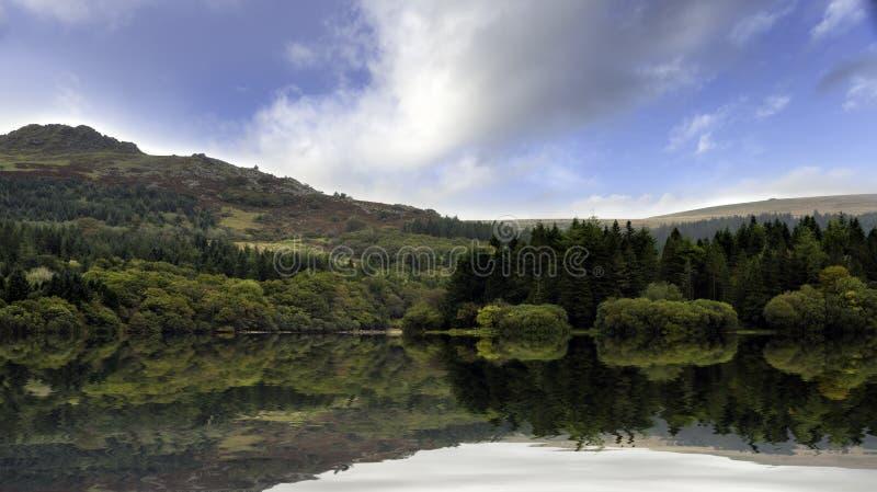 在Dartmoor的Burrator 库存照片