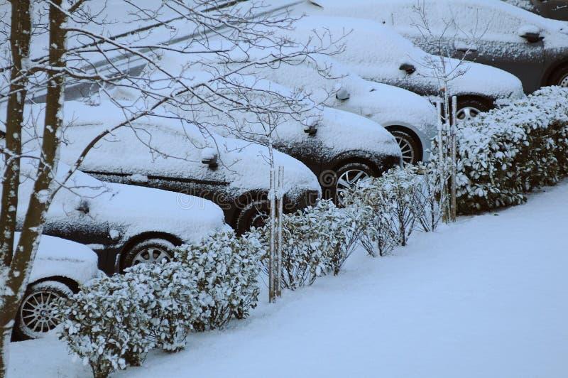 在DENMARK_SNOW秋天的天气 免版税库存图片
