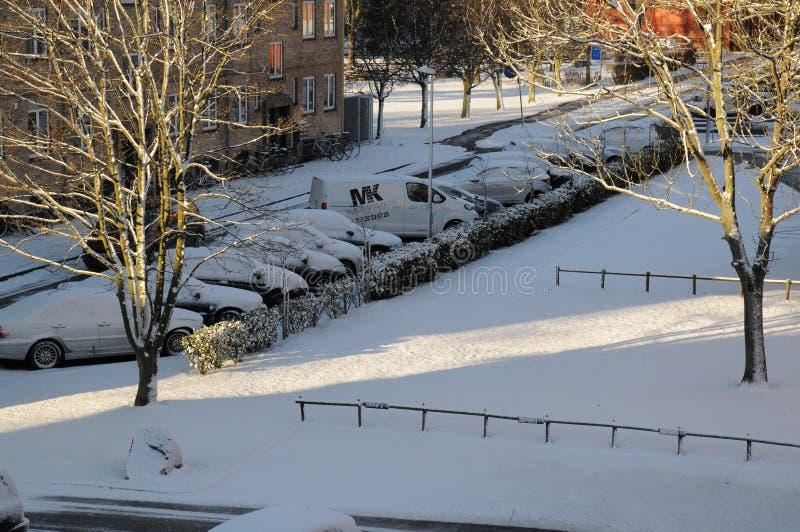 在DENMARK_SNOW秋天的天气 免版税库存照片