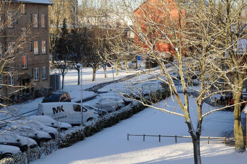 在DENMARK_SNOW秋天的天气 库存照片