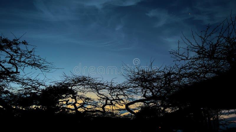 在Desierto de la Tatacoa的日落 图库摄影
