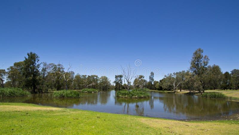 在Dubbo,新南威尔斯,澳大利亚的在内地一沼泽地billabong 免版税库存图片