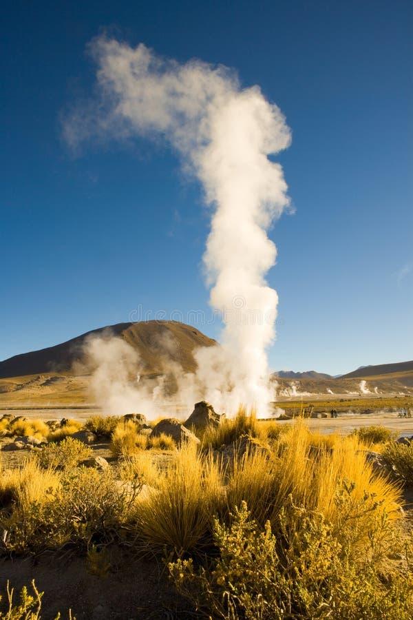 在El Tatio喷泉,智利的喷气孔 库存照片