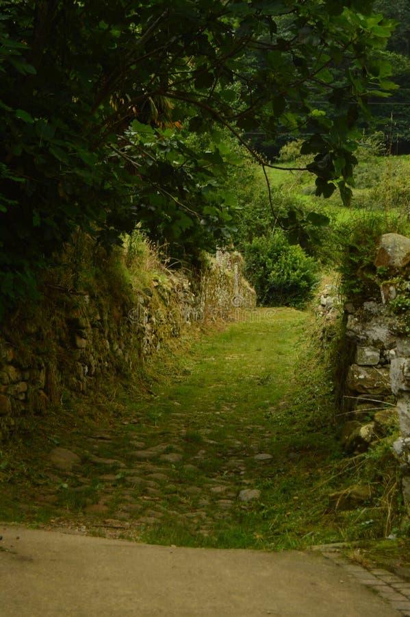 在Encantau Camin的路线的意想不到的扔石头的道路在利亚内斯中委员会  自然,旅行,风景,森林,幻想 库存图片