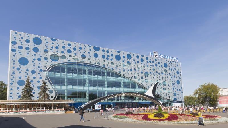 在ENEA的水族馆Moskvarium 免版税库存图片