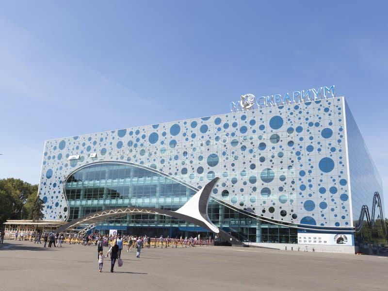 在ENEA的Moskvarium在莫斯科 免版税图库摄影