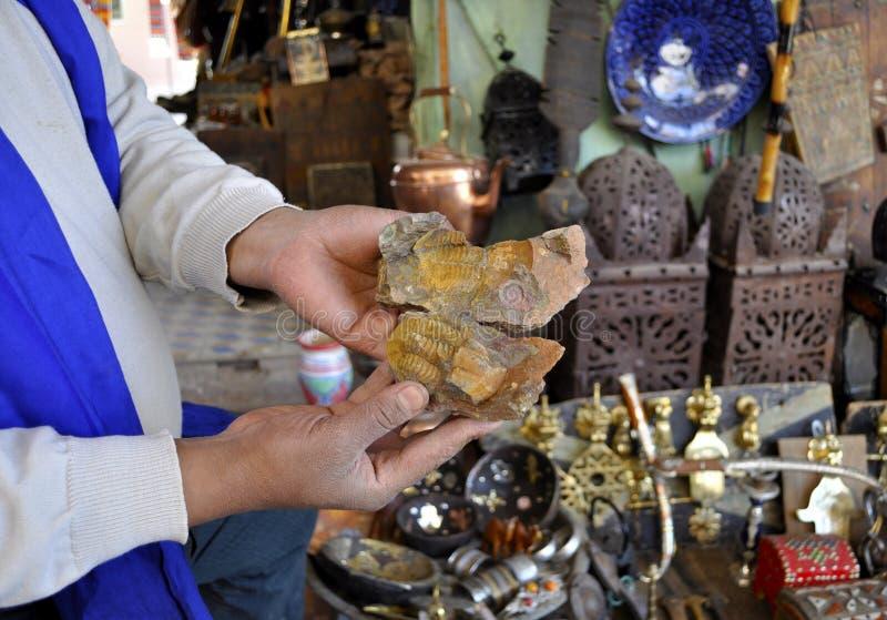 在Erfoud souk,摩洛哥的化石 免版税图库摄影
