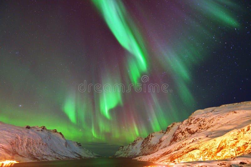 在Ersfjorden的极光Borealis,特罗姆瑟,挪威 库存图片
