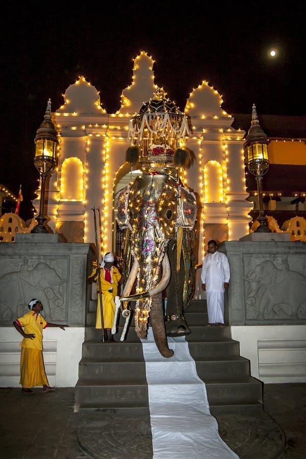 在Esala Perahera期间,礼仪Tusker退出寺庙pof神圣的牙遗物在康提在斯里兰卡 图库摄影