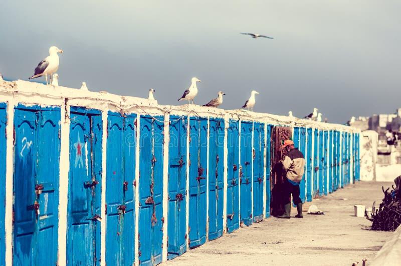 在Essauira港的渔夫客舱  免版税库存图片