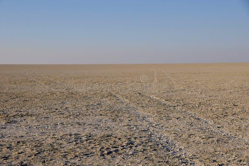 在Etosha的不尽的天际在纳米比亚盐溶平底锅 免版税图库摄影