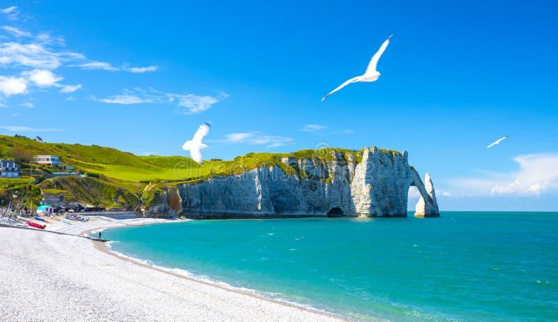 在Etretat峭壁的美丽如画的全景风景  自然惊人的峭壁 Etretat、诺曼底、法国、拉芒什海峡或者英语 免版税图库摄影