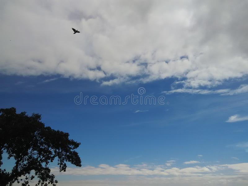 在evining巴特那的天空 库存图片