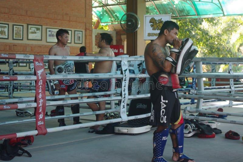 在Fairtex的泰拳训练 免版税库存照片