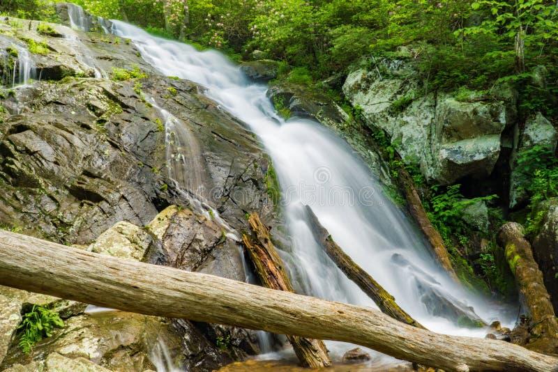 在Fallingwater小河的落下的瀑布 免版税库存图片