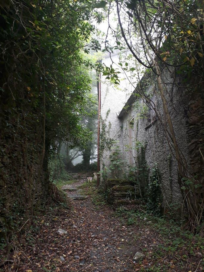 在Fasce山的废墟 库存图片