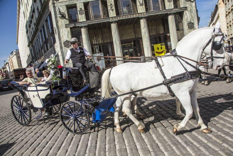 在Fiaker的传统马骑术通过市中心 免版税库存图片