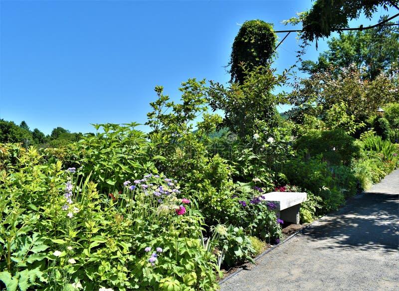 在Fowers, Shelburne桥梁的石凳在Deerfield河的落,富兰克林县, Massacusetts,美国,美国 库存照片