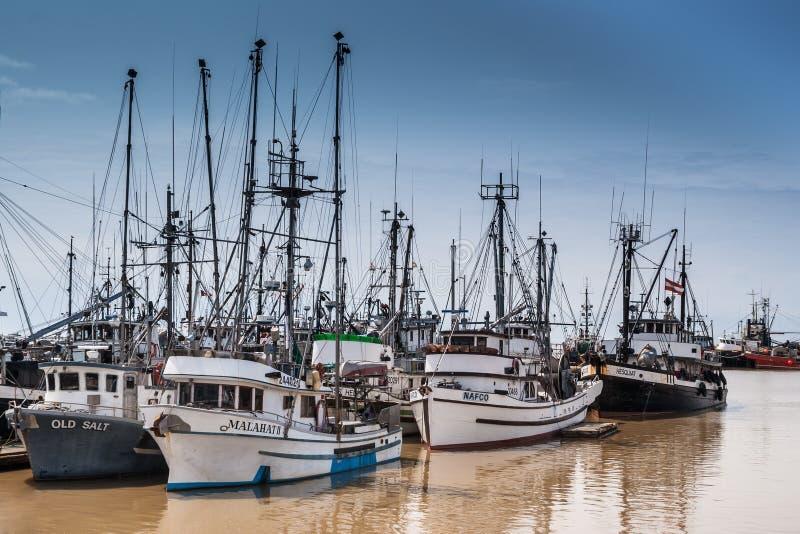 在Fraser河Steveston的,加拿大的渔船队 免版税库存图片