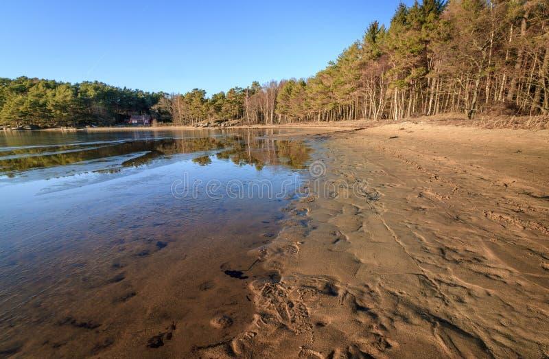 在Furulunden Mandal的海滩在挪威 免版税库存图片