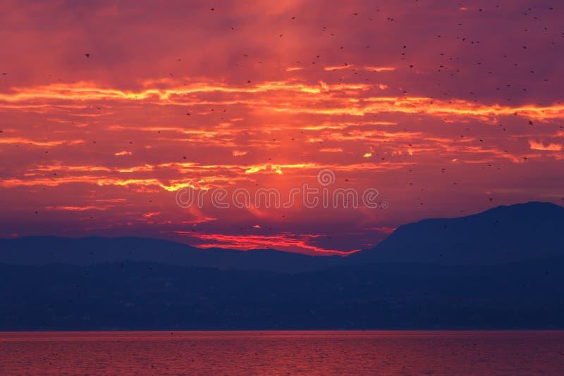 在Garda湖的日落 库存图片